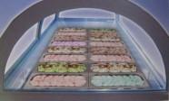 Fotogalerie: zmrzlinová vitrína Boston Scooping